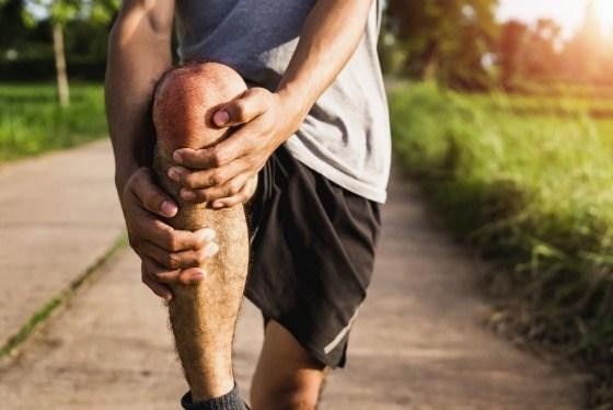 Kurkuma, boswellia and ginger for healthy joints
